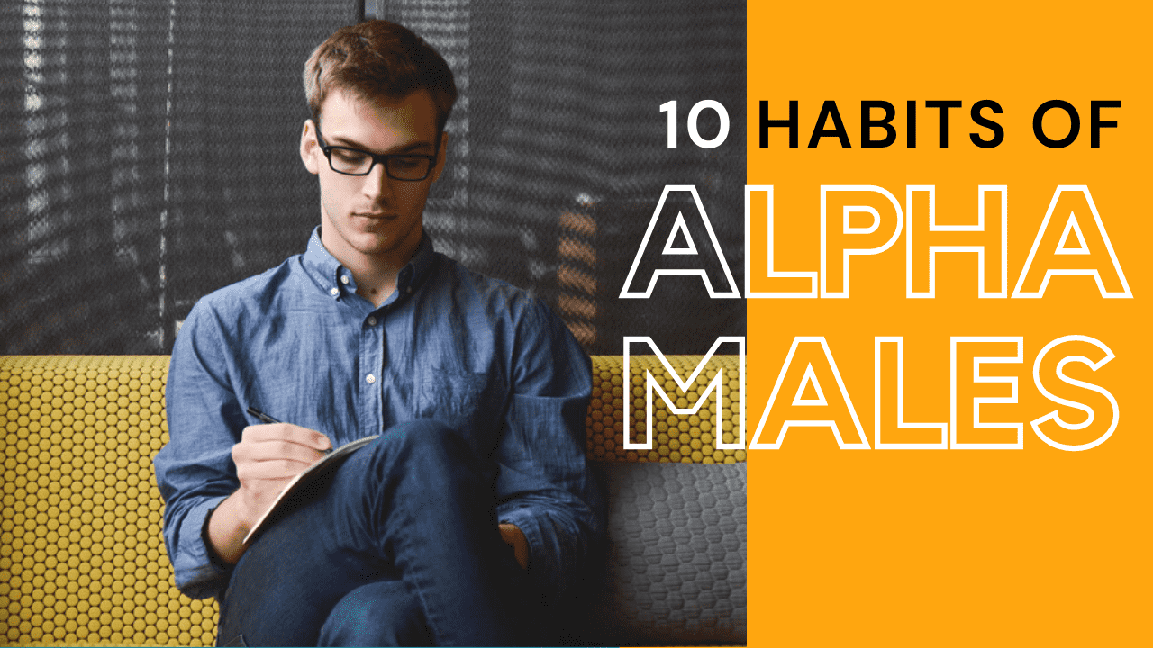 Read more about the article How To Be An Alpha Males In Life